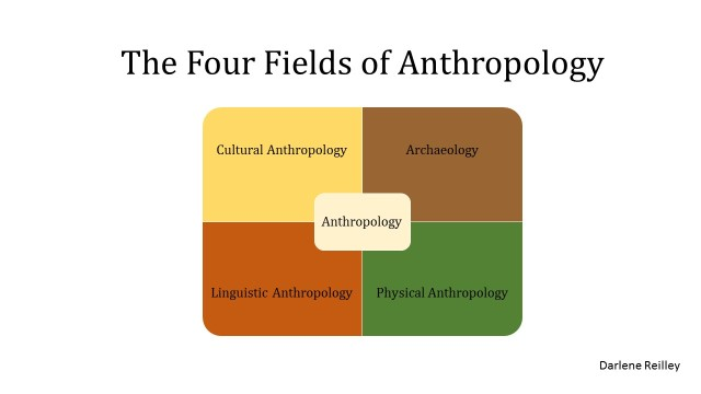 The Four Fields of Anthropology