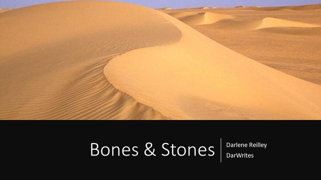 Bones and Stones by Darlene Reilley